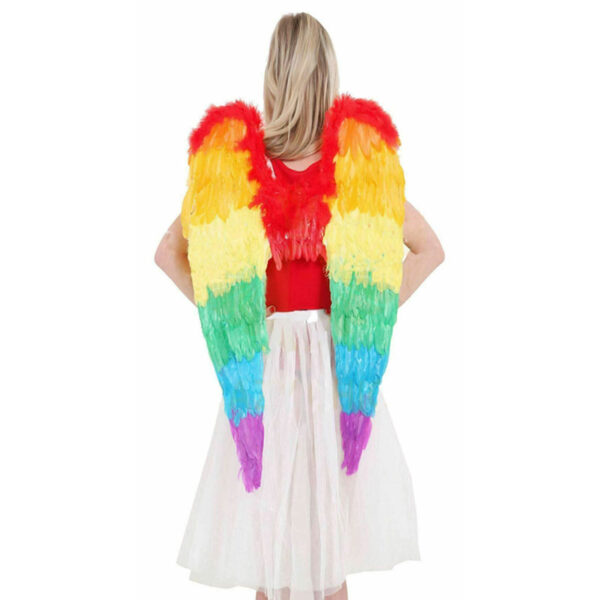 Rainbow Foldable Wings