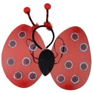 Girls Lady Bird Wings and Deely Bopper Set