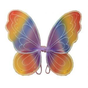 Rainbow Coloured Fairy Wings