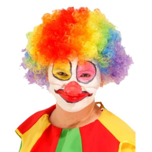 Clown Afro Wig