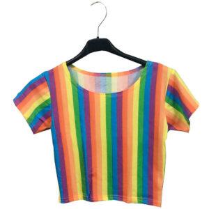 Rainbow Stripes Crop Top