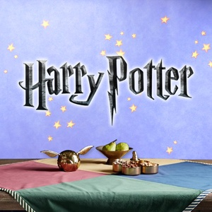 Harry Potter Party Supplies - Birthday Party Ideas, Costumes, Decorations and More